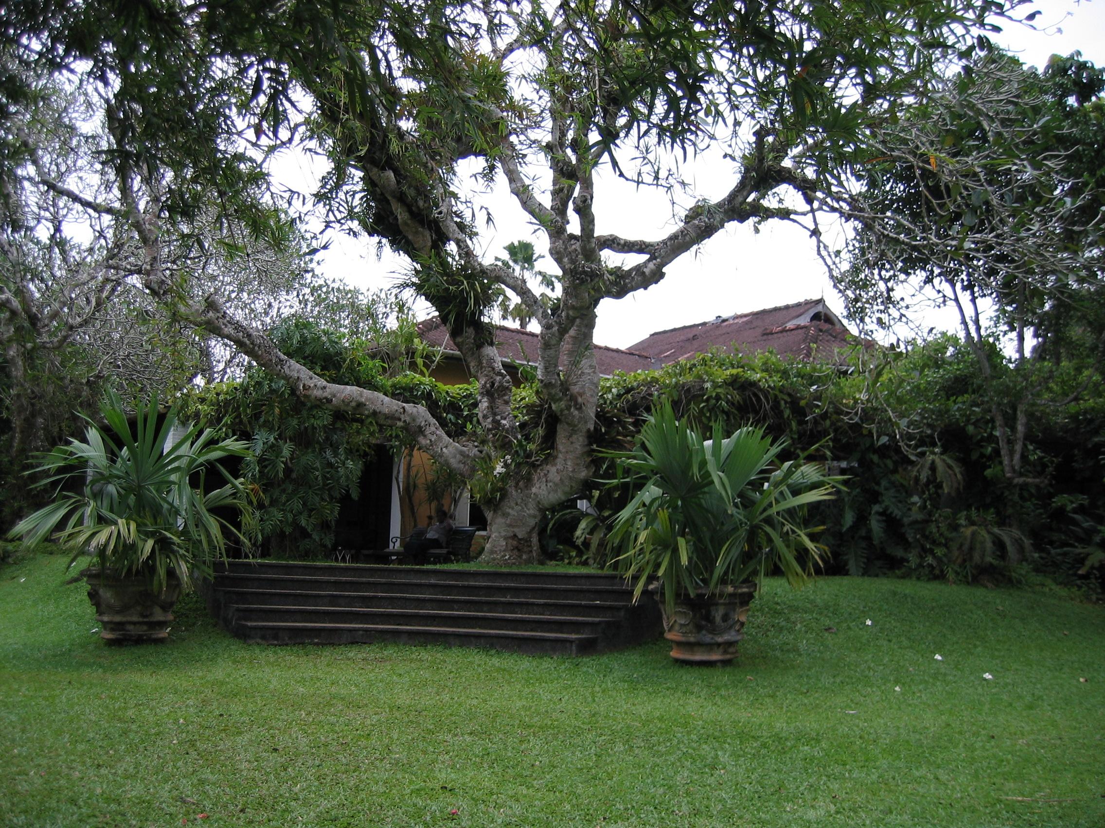 A Bawa Garden Estate Sri Lanka Tastetravel